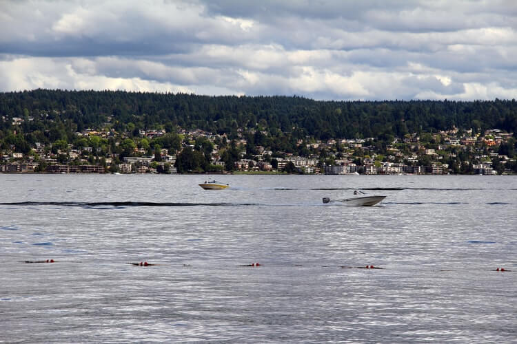 Lake Washington is a great destination for a day trip.