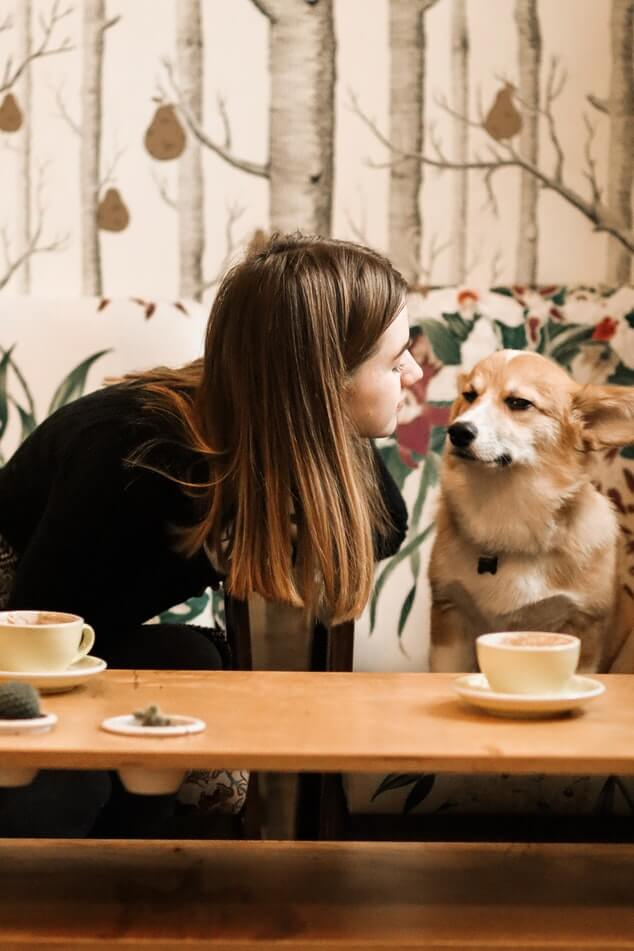 Having a cup of perfect coffee with your furry companion sounds ideal