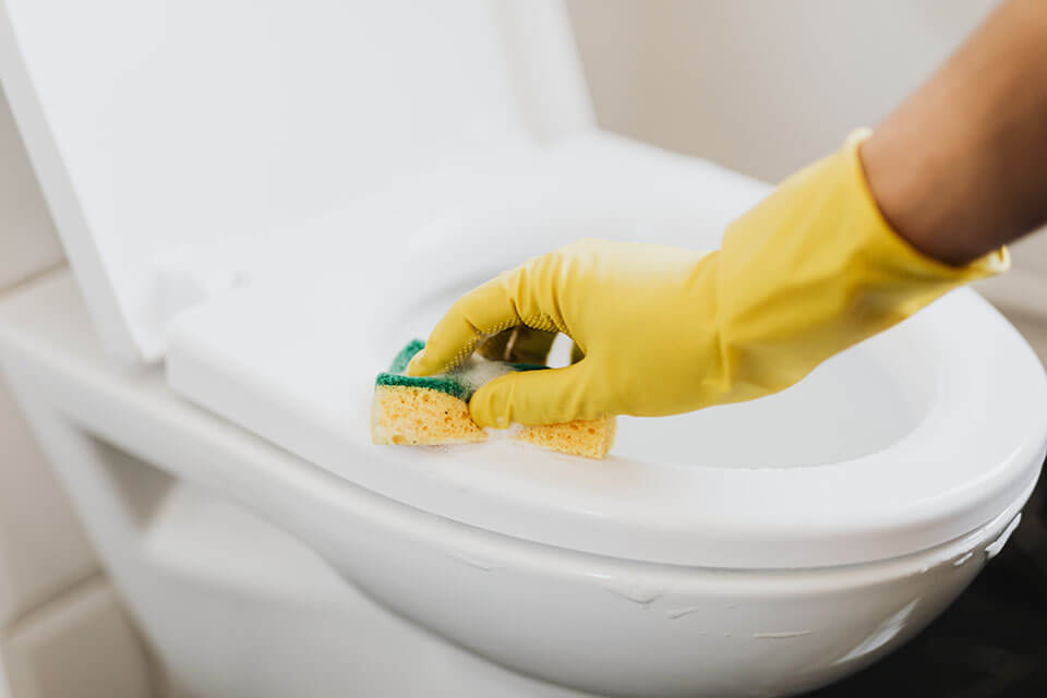 A person cleaning a toilet seat