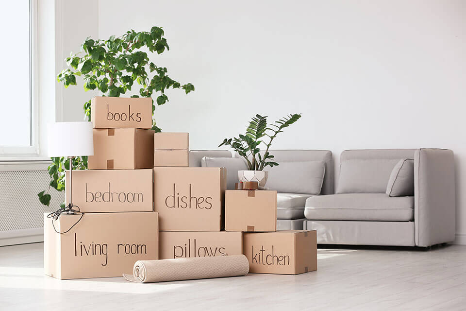 Labeled packages waiting for movers from a moving company, plants, and a grey couch