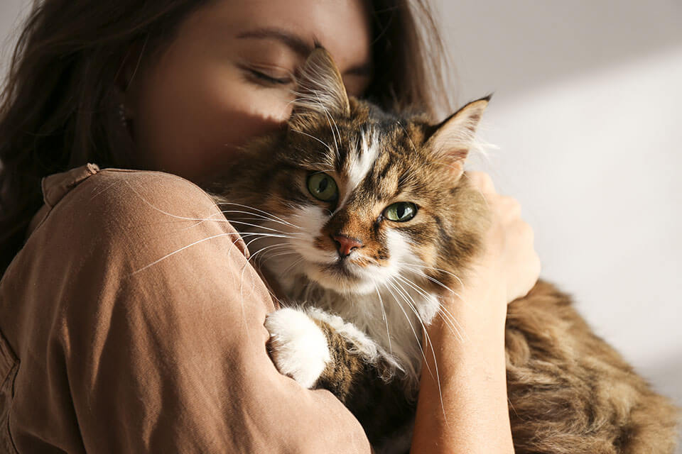 A girl holding her cat in a hug